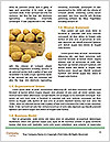 0000076714 Word Template - Page 4