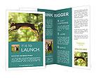 0000076715 Brochure Templates