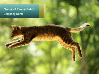 0000076715 PowerPoint Template - Slide 1