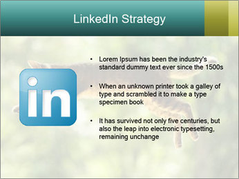 0000076715 PowerPoint Template - Slide 12