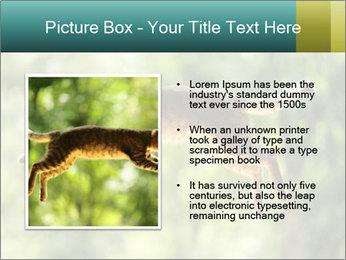 0000076715 PowerPoint Template - Slide 13