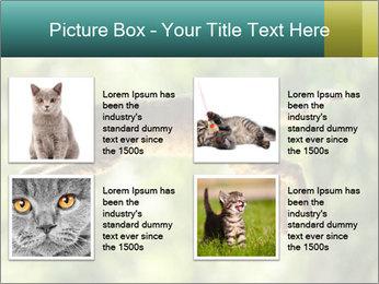 0000076715 PowerPoint Template - Slide 14