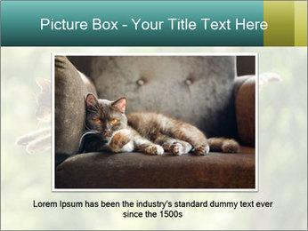 0000076715 PowerPoint Template - Slide 15