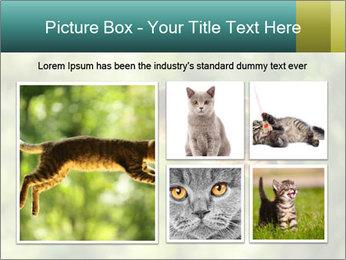 0000076715 PowerPoint Template - Slide 19