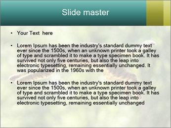 0000076715 PowerPoint Template - Slide 2