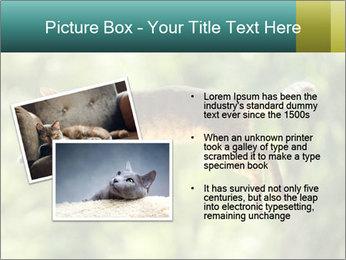 0000076715 PowerPoint Template - Slide 20