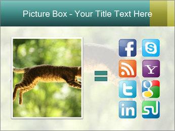 0000076715 PowerPoint Template - Slide 21