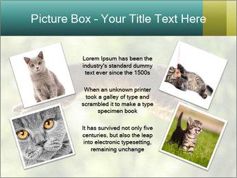 0000076715 PowerPoint Template - Slide 24