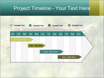 0000076715 PowerPoint Template - Slide 25