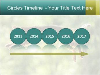 0000076715 PowerPoint Template - Slide 29