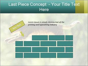 0000076715 PowerPoint Template - Slide 46