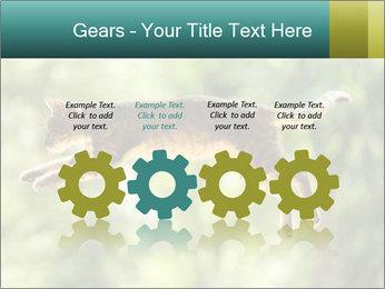 0000076715 PowerPoint Template - Slide 48