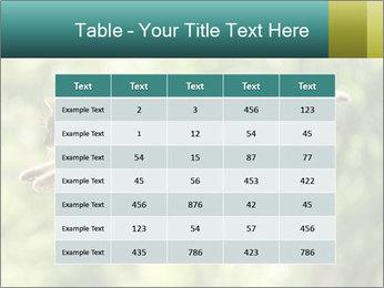 0000076715 PowerPoint Template - Slide 55