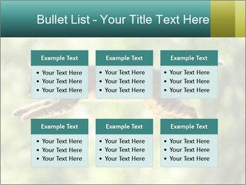 0000076715 PowerPoint Template - Slide 56