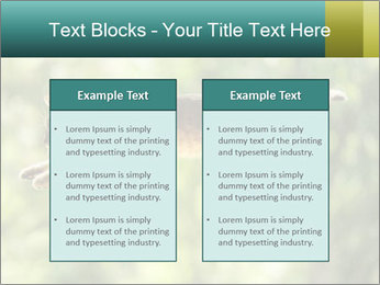 0000076715 PowerPoint Template - Slide 57