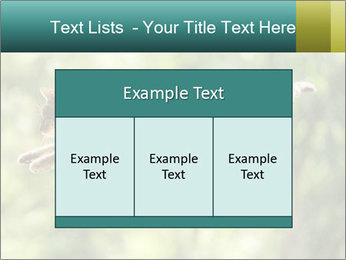0000076715 PowerPoint Template - Slide 59