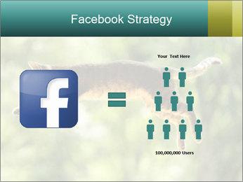 0000076715 PowerPoint Template - Slide 7