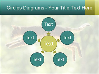 0000076715 PowerPoint Template - Slide 78