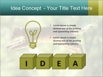 0000076715 PowerPoint Template - Slide 80