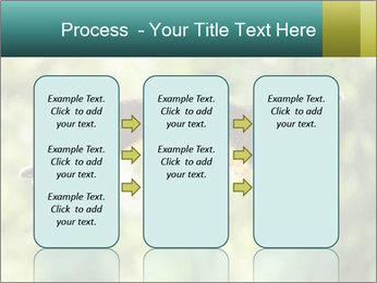 0000076715 PowerPoint Template - Slide 86