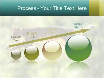 0000076715 PowerPoint Template - Slide 87