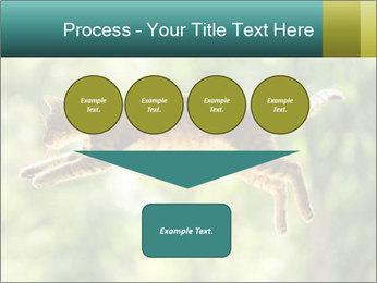 0000076715 PowerPoint Template - Slide 93