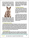 0000076715 Word Templates - Page 4