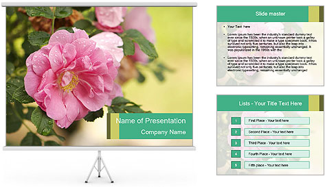 0000076733 PowerPoint Template