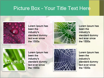 0000076733 PowerPoint Template - Slide 14