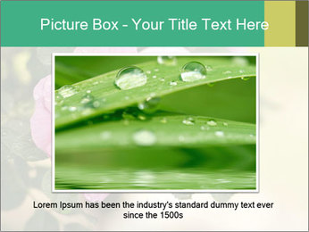 0000076733 PowerPoint Template - Slide 15
