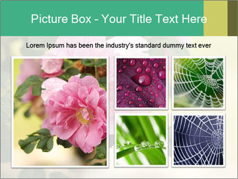 0000076733 PowerPoint Template - Slide 19