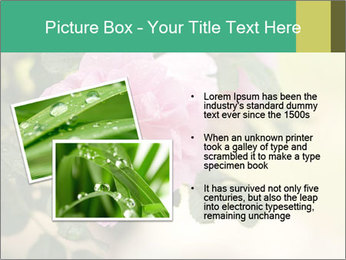 0000076733 PowerPoint Template - Slide 20