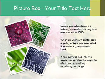 0000076733 PowerPoint Template - Slide 23