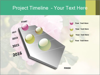 0000076733 PowerPoint Template - Slide 26
