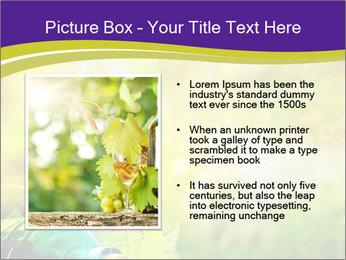 0000076735 PowerPoint Template - Slide 13