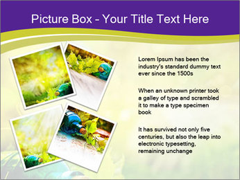 0000076735 PowerPoint Templates - Slide 23
