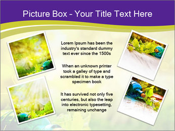 0000076735 PowerPoint Template - Slide 24