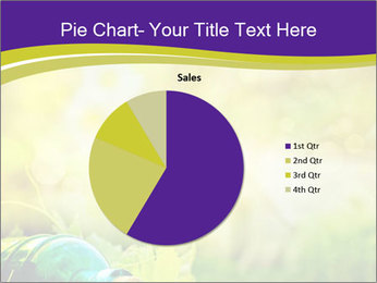 0000076735 PowerPoint Template - Slide 36