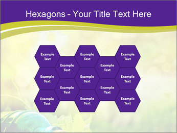 0000076735 PowerPoint Template - Slide 44