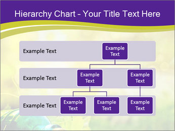 0000076735 PowerPoint Template - Slide 67