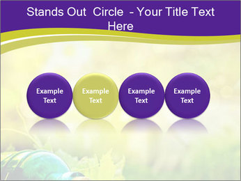 0000076735 PowerPoint Template - Slide 76