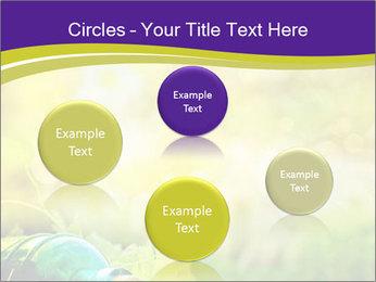 0000076735 PowerPoint Template - Slide 77