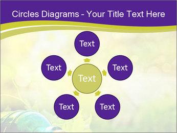 0000076735 PowerPoint Template - Slide 78