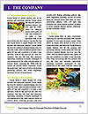 0000076735 Word Template - Page 3
