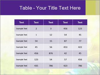 0000076737 PowerPoint Template - Slide 55