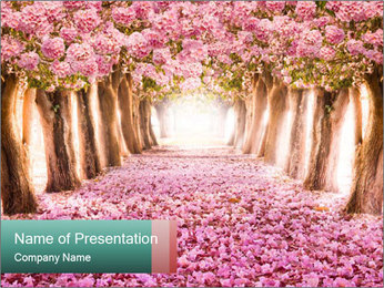 0000076738 PowerPoint Template - Slide 1