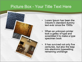 0000076746 PowerPoint Templates - Slide 17