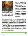 0000076746 Word Templates - Page 4