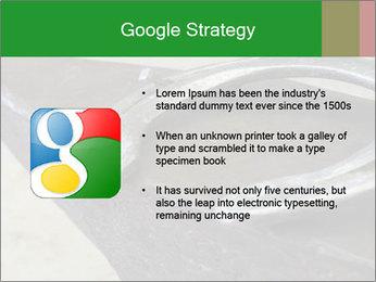 0000076748 PowerPoint Templates - Slide 10
