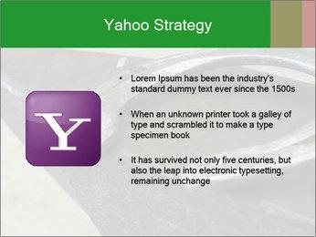 0000076748 PowerPoint Templates - Slide 11